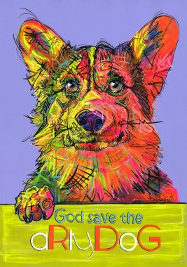 aRtyDoG Captain, Corgi Welsh Pembroke, boy, USA