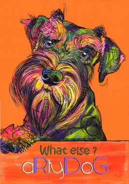 aRtyDoG Divine Gracie, Schnauzer, girl, Australia