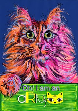 aRtycat Roxy, Maine Coon, girl, USA