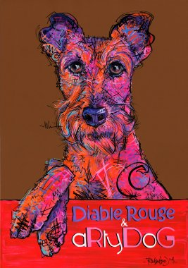 aRtyDoG Potter, Irish Terrier, boy, Canada