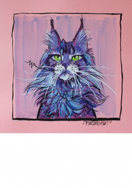 Maine Coon, painted sketch on thick colored art paper