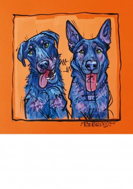 Beauceron & Malinois, painted sketch on thick coloured art paper