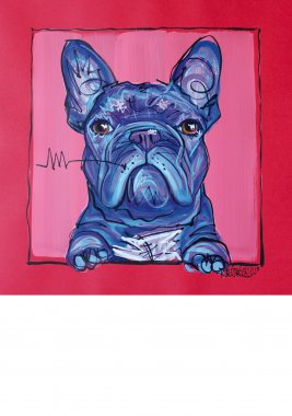 French Bulldog, painted sketch on thick coloured art paper, 32x32cm