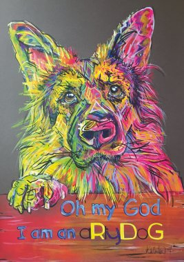 aRtyDoG Kai, German Shepherd, boy, USA